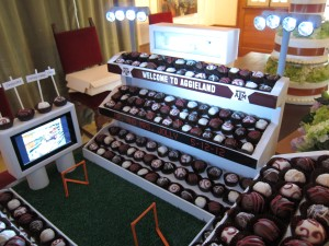 Kyle Field Groom's Cake